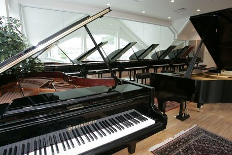 Bosendorfer in CT